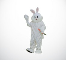 Bunny Costume Rental