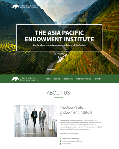 Asia Pacific Endowment Institute